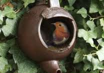 Beautiful Birds  / by Brenda Nanni