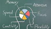 Neuroplasticity / Healing my limbic system through Neuroplasticity / by Shandy Monte