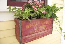 Home & Garden / Living outside / by Nancy Moore