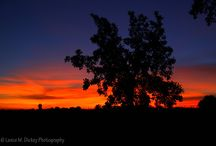 Is this Heaven?  No, it's Iowa! / by Shelie Kirby
