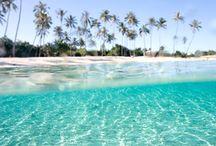 Trips I want to take / travel / by damaris gonzalez