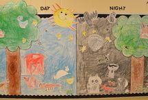 Nocturnal Animal Unit / by Jennifer Rojas