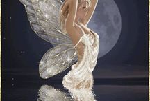 Fairy / by Whairy Rose