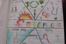 grade 3 science / by GeorgetteN