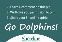 Dolphin pride / Calling all fans of the Dolphins! Feel free to add your own pins here. Just follow the instructions on the first pin to find out how. Go Dolphins! / by Shoreline Community College