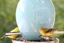 Bird's / by Velma Sanchez