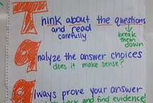 OAA Reading Prep / Ideas to help prep for the Reading OAA / by Carli Smith