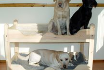 Pets: Beds / by Heather Buzby