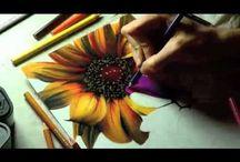 color pencils / by Olga Gonzalez