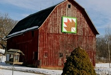 Barn Quilts / by Polly Fisk