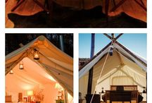 Glamping / by Terry Chapman