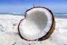 """All things COCONUT / """"Like"""" my page: https://www.facebook.com/Love.Coconut.Love / by Esther Szczerba"""