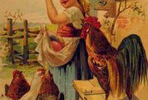 poulets et oeufs / by Chandra Lyons
