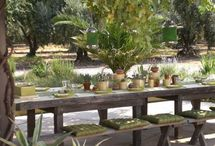 Outdoor Spaces / by Eve Weinsheimer