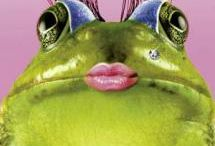 Frogs, Frogs, Lizards and a few Toads / by Janice Poma