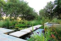 home & garden / by Stephanie Diane