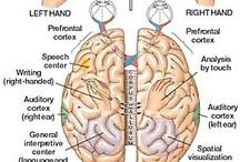 Neurodiversity - SPD/dyspraxia/dysgraphia / by Libby Shultz Eddings