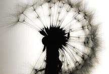 Kaikkea kaunista ja kiinnostavaa / by sari keurulainen