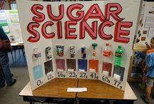 Science fair / by Staci Olson