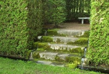 french fantasy gardens / by Mary Moquin