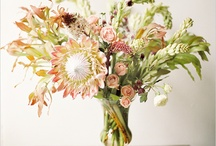 Floral Arrangements / by Lauren Niedergang