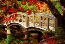 bridges / by Rhonda Medford