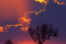 Sunsets / by Cindy Brainard