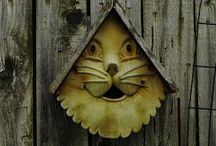 birdhouses and cages / by Susan Hickey