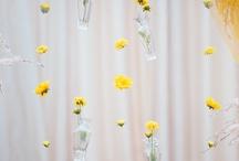 Carrie Wedding / by Katie Ingraham