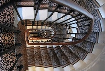 Stairs / by Laura Mitchell Dalton