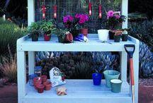 Outdoors  / by Lynette Benham