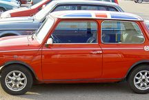 Real Minis! / by Helena