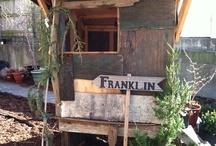 Franklin / by Matt Shapoff