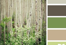 Color Palettes / by Denise Campbell