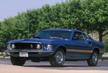 1969 Ford Mustangs / 1969 Ford Mustangs / by StangBangers