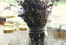 Mason Jar Obsession. / by Courtney Dylan