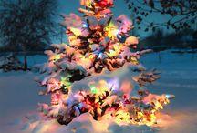 Christmas / I have a lot with Buddy the Elf - I'm a nutcracker over Christmas!!! / by Angela Faulkner