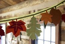 Thanksgiving DIY / by Jen Schumann
