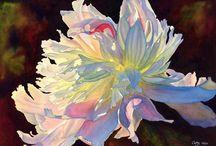 Garden Flowers - Peonies / by Nancy Stipa