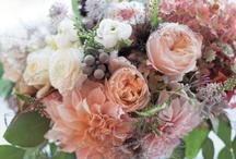 bouquets / by Sammie Clark