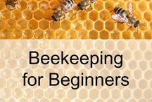 Beekeeping / Keeping bees on a small scale for honey / by Emergency Essentials, LLC