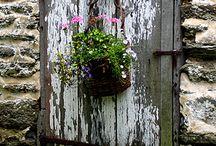 Doors... / by Denise Linney
