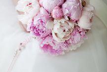 Dream Wedding / by Bailey McChesney