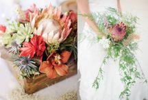 Floral decor/wedding / by Amanda Shaw