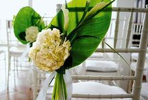 Wedding Ceremony / by A Modern Proposal - Edmonton Wedding Planner