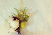 Abode weddings | bash / by ABODEdesignstudio