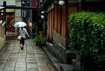 Japan Inspiration / by Rayne Leafe