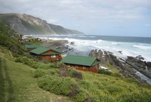 Storms River Wedding / by Luciana Saporetti