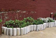 Gardenista Urban Gardens / by Crystal Sell