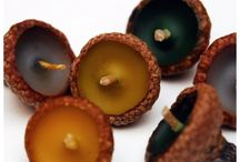 Acorn/pine cone crafts / by Kristine Adamiec